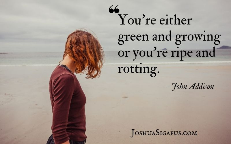 You're either green and growing or you're ripe and rotting.
