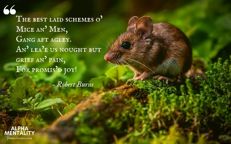 I believe that Robert Burns may have said it best.